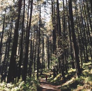 Correr en el cielo sobre nubes de piedra: La Pila